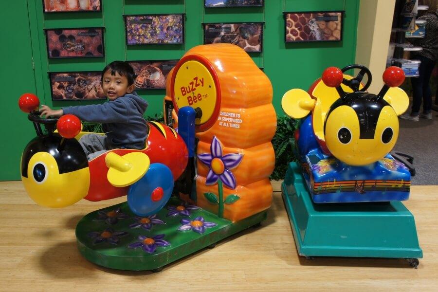 playground huka honey hive