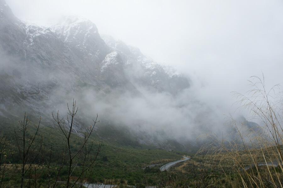 cleddau valley