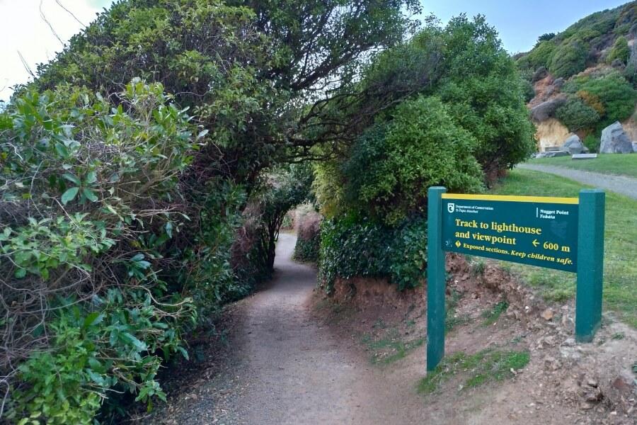 Jalan menuju Nugget Point Lighthouse